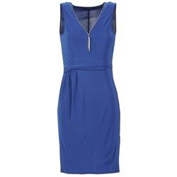 textil Dame Korte kjoler Morgan ROPOM Blå