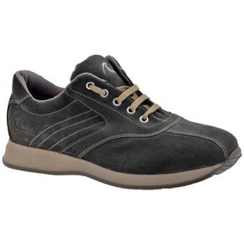 Sko Herre Høje sneakers Docksteps  Grå