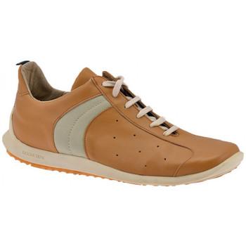 Sko Herre Høje sneakers Docksteps  Brun
