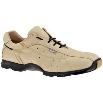 Sko Herre Lave sneakers Docksteps  Beige