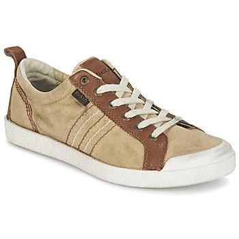 Sneakers Kickers TRIDENT (2120763695)