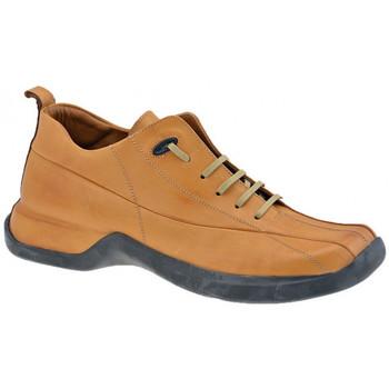 Sko Herre Høje sneakers Pawelk's  Brun