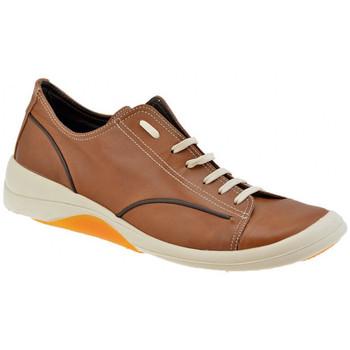 Sko Herre Lave sneakers Pawelk's  Brun
