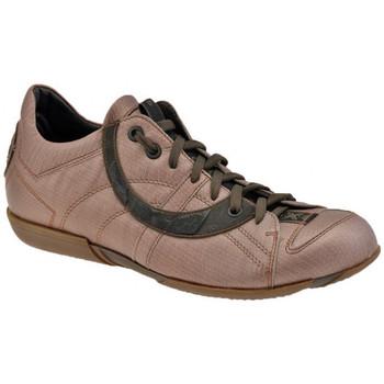 Sko Herre Lave sneakers OXS  Flerfarvet