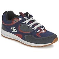 Sko Herre Skatesko DC Shoes KALIS LITE Marineblå / Grå
