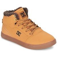 Sko Børn Høje sneakers DC Shoes CRISIS HIGH WNT B SHOE WD4 Hvede / CHOKOLADE