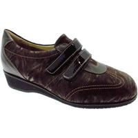 Sko Dame Lave sneakers Calzaturificio Loren LOL8050m marrone