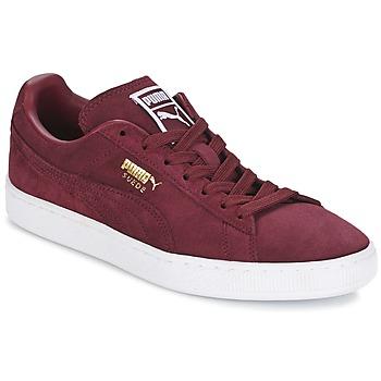 Sko Lave sneakers Puma SUEDE CLASSIC + Bordeaux