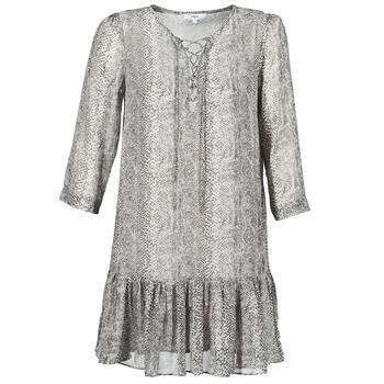 textil Dame Korte kjoler Suncoo CIARA Grå