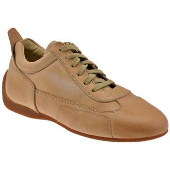 Sko Herre Lave sneakers Bocci 1926  Beige