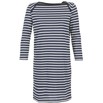 textil Dame Korte kjoler Petit Bateau EREMATE Marineblå / Hvid