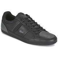 Sko Herre Lave sneakers Lacoste CHAYMON 316 1 Sort
