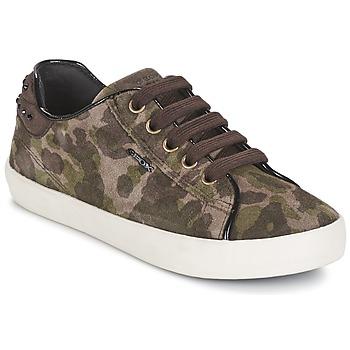 Sko Pige Lave sneakers Geox KIWI GIRL Grøn