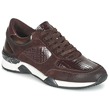Sko Dame Lave sneakers Dream in Green FARRICA Bordeaux