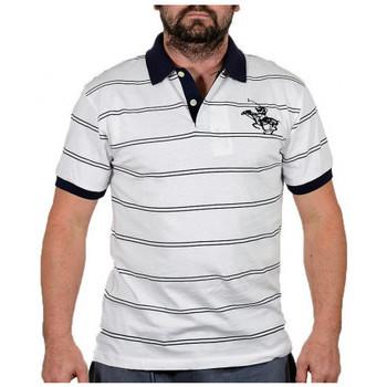 textil Herre T-shirts m. korte ærmer Santa Barbara  Hvid