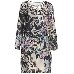 textil Dame Korte kjoler Chipie SERRENA Flerfarvet