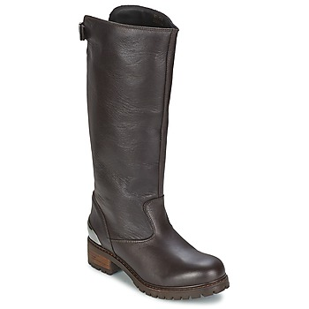 Sko Dame Chikke støvler Love Moschino JA26094 Sort