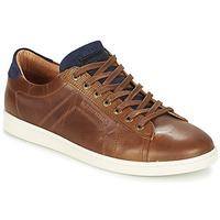 Sko Herre Lave sneakers Redskins ORMIL Cognac / Marineblå
