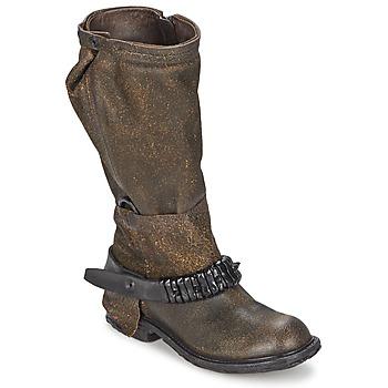 Sko Dame Chikke støvler Airstep / A.S.98 RINETTE Brun
