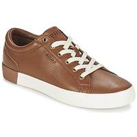 Sko Herre Lave sneakers Ralph Lauren ALDRIC II Brun