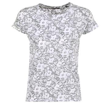 textil Dame T-shirts m. korte ærmer Marc O'Polo BRIDELOPAC Grå / Hvid