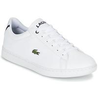Sko Børn Lave sneakers Lacoste CARNABY EVO BL 1 Hvid