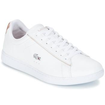 Sko Dame Lave sneakers Lacoste CARNABY EVO 217 2 Hvid / Pink