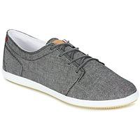 Sko Herre Lave sneakers Lafeyt DERBY CHAMBRAY Grå