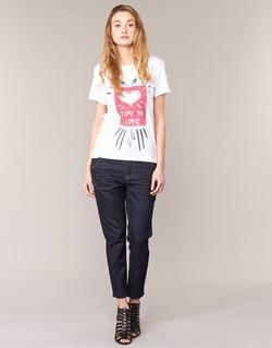 textil Dame Jeans - boyfriend Diesel FAYZA EVO Blå / 0853N