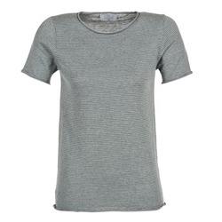 textil Dame T-shirts m. korte ærmer Casual Attitude GENIUS Grå