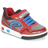 Sko Dreng Lave sneakers Geox J GREGG B Rød / Blå