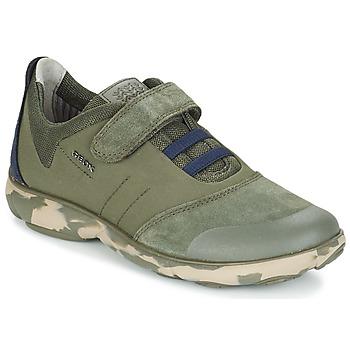 Sko Børn Lave sneakers Geox J NEBULA B. A Kamo