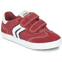 Sko Dreng Lave sneakers Geox J KIWI B. M Rød / Marineblå