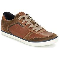 Sko Herre Lave sneakers Geox BOX C Brun