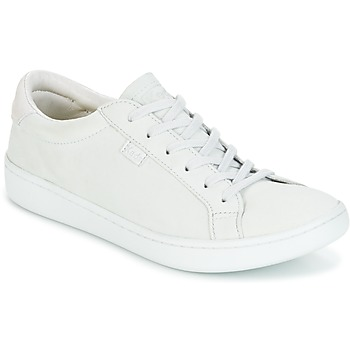 Sko Dame Lave sneakers Keds ACE MONO Gletscher / Grå