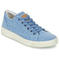 Sko Dame Lave sneakers PLDM by Palladium TILA Blå