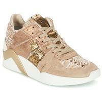 Sko Dame Høje sneakers Serafini CHICAGO Beige / Guld