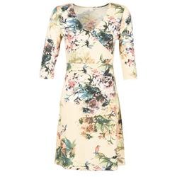 textil Dame Korte kjoler Cream ROSEMARY Flerfarvet