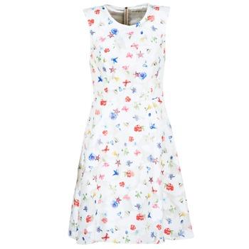textil Dame Korte kjoler Derhy MAESTRIA Hvid