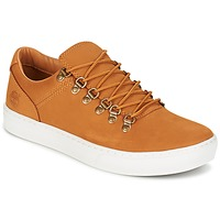 Sko Herre Lave sneakers Timberland ADV 2.0 CUPSOLE ALPINE OX Brun