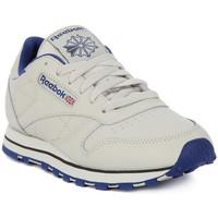 Sko Herre Lave sneakers Reebok Sport CLASSIC LTHR Beige