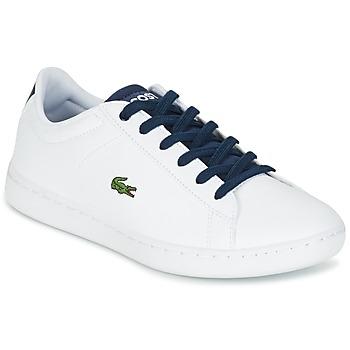 Sko Børn Lave sneakers Lacoste CARNABY EVO Hvid / Marineblå