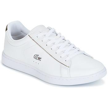 Sko Dame Lave sneakers Lacoste CARNABY EVO Hvid