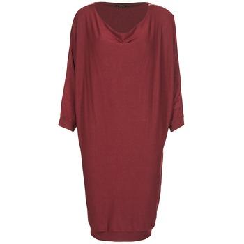 textil Dame Korte kjoler Kookaï BLANDI Bordeaux