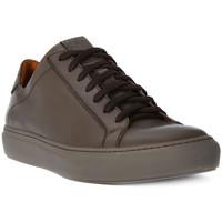 Sko Herre Lave sneakers Lion WEST 311 Marrone