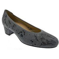 Sko Dame Højhælede sko Calzaturificio Loren LO60713gr grigio