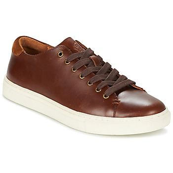 Sko Herre Lave sneakers Polo Ralph Lauren JERMAIN Brun
