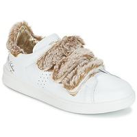 Sko Dame Lave sneakers Ippon Vintage FLIGHT POLAR Hvid / Kobber