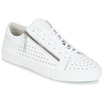 Sko Herre Lave sneakers Jim Rickey ZED STUDS Hvid / Sølv