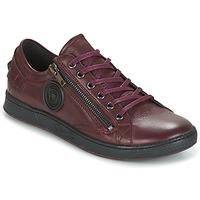 Sko Dame Lave sneakers Pataugas JESTER Bordeaux